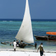 Matemwe Beach, Zanzibar — Stock Photo #12484043