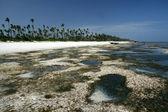 Matemwe beach, zanzibar — Stock fotografie