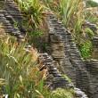 Pancake Rocks, New Zealand — Foto de stock #12817889