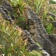 Pancake Rocks, New Zealand — ストック写真 #12817889