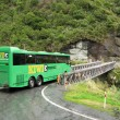 Green Bus -Te Wahipounamu, UNESCO Conservation Area, New Zealand — Stock Photo