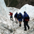 Franz Josef Glacier, New Zealand — Stock Photo #12819566