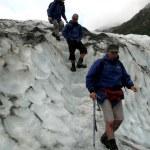 Franz Josef Glacier, New Zealand — Stock Photo