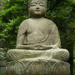 Buddha statue - Ryoan Ji, Kyoto, Japan — Stock Photo