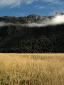Milford Sound, Te Wahipounamu, New Zealand — Stock Photo