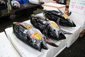 Tsukiji Fish Market, Tokyo, Japan — Stock Photo