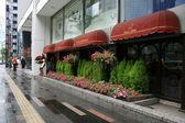 Ginza District,Tokyo, Japan — Stock Photo