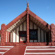 Maori Culture in New Zealand — Stockfoto #12874752