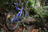 Mountain biken - tongariro-nationalpark, neuseeland — Stockfoto