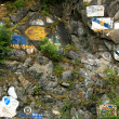 Stock Photo: Rock Art - Skaguay, Alaska, USA