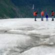 Ice Hiking - Mendenhall Glacier, Alaska, USA — Stock Photo