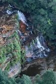 Blue Mountains National Park, UNESCO, Australia — Stock Photo