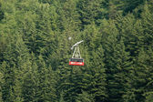 Tramway, Juneau, Alaska, USA — Stock Photo
