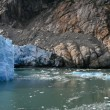 Glacier-Bay, Alaska, usa — Stockfoto