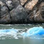 Glacier Bay, Alaska, USA — Stock Photo #12914054