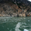 Glacier Bay, Alaska, USA — 图库照片