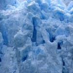 Glacier Bay, Alaska, USA — Stock Photo #12914798