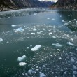 Glacier bay, alaska, usa — Photo