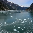Glacier Bay, Alaska, USA — Stock Photo #12915181