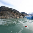 Glacier Bay, Alaska, USA — Stock Photo
