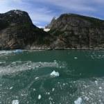 Glacier Bay, Alaska, USA — Stock Photo #12915743