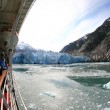 Glacier Bay, Alaska, USA — Stock Photo #12915885