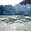 Glacier Bay, Alaska, USA — Stock Photo #12917196