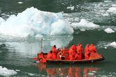 Glacier-bay, alaska, usa — Stockfoto