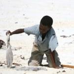 Matemwe Beach, Zanzibar — Stock Photo #12946102