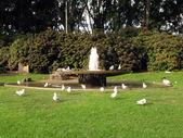 水喷泉-海德公园,悉尼,澳大利亚 — 图库照片