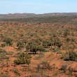 Outback - The Red Centre, Australia — Stock Photo