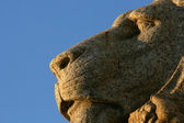 Lion Statue - Royal Shrine, Melbourne, Australia — Stockfoto