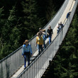 Capilano Suspension Bridge, Vancouver, Canada - Stock Photo
