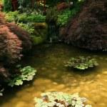 giardino giapponese - butchart gardens, victoria, bc, canada — Foto Stock