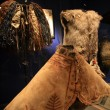 Royal BC Museum, Victoria, BC, Canada — Stock Photo #14388771