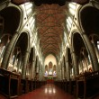 Christchurch Cathedral, Victoria, BC, Canada — Stock Photo #14389511
