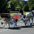 Stock Photo: Horse and Cart - Victoria, BC, Canada