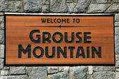 Grouse Mountain, Vancouver, BC, Canada — Stock Photo