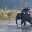 River at Chitwan NP , Nepal - Stock Photo