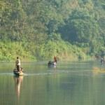 River at Chitwan NP , Nepal — Stock Photo #20987357