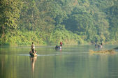 River at Chitwan NP , Nepal — Stock Photo