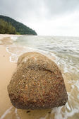Penang National Park — Stock Photo