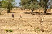 Katima Mulio - Namibia — Stock Photo