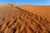 Sand Dune No. 45 at Sossusvlei, Namibia — Stock Photo