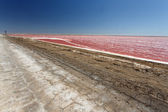 Salt Works in Namibia — Stock Photo