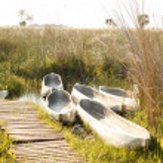 Canoes - Okavango Delta, Africa — Stock Photo #47423963