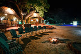 Luxus Safari camp — Stockfoto