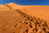 Tourists climb Dune — Stock Photo