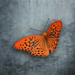 Orange butterfly in front of grunge wall — Zdjęcie stockowe