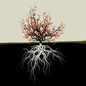 Graphic illustration of tree with roots — Vector de stock